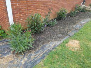 using black plastic garden