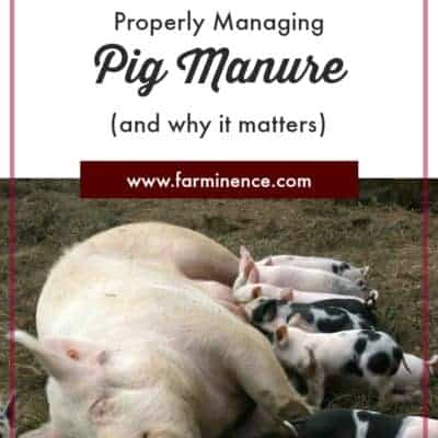Pig Manure Management