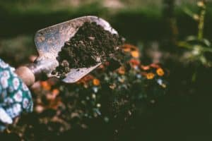 fall garden soil preparation