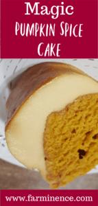 pumkin spice cake
