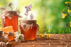 benefits of honey bees
