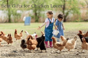 gifts for chicken lovers, chicken gifts