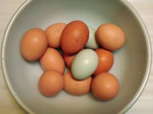 cleaning farm fresh eggs