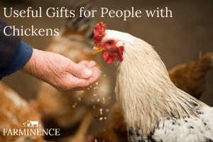 Useful Gifts for People Who Love Chickens