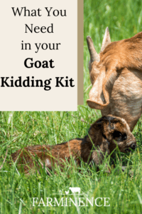 goat kidding kit