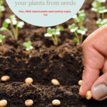 starting seeds indoors, reasons to start seeds at home