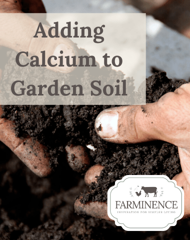 adding calcium to garden soil