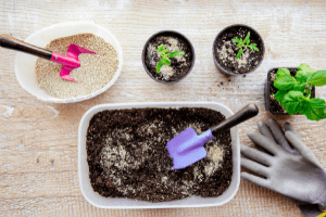 using vermiculite in the garden, adding vermiculite to soil