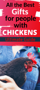 what to buy for people with chickens, chicken gifts for her, chicken gifts for mom, chicken gifts for dad