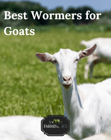 best dewormer to use for goats, best wormer medicine goats