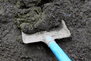 best methods fly control, manure piles