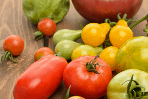 when to pick tomatoes from the garden
