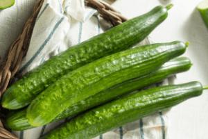 types of cucumbers, best slicing cucumbers, english cucumbers
