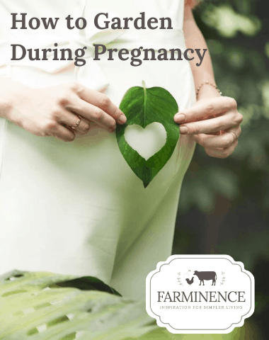 Are you trying to grow a garden while you're pregnant? Gardening during pregnancy can be tough. Don't let being pregnant stop you from growing an amazing vegetable garden though. With my gardening safety tips, you'll be able to grow an amazing garden while you're pregnant. Vegetable gardening tips for beginners.
