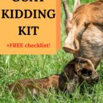 goat kidding kit, goat kidding supplies
