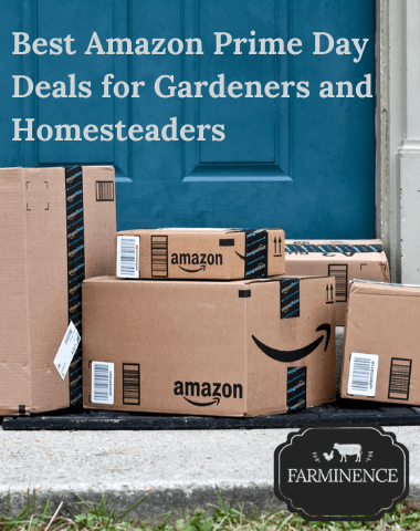 amazon prime day deals for homesteading and gardening