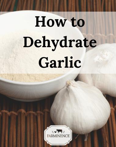 how to dehydrate garlic, what to do with fresh garlic, homemade garlic powder