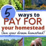 how to finance a homestead, paying for a homestead
