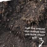 is soil living, is garden soil abiotic or biotic