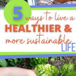 how to live more sustainably