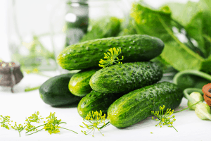 best cucumber types for pickling, cucumbers for pickles