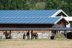 solar panels on horse farm, pros and cons of solar power on farm