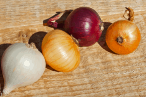 growing onions from seed, the best type of onion to grow from seeds