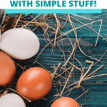 water glassing eggs, preserving fresh eggs