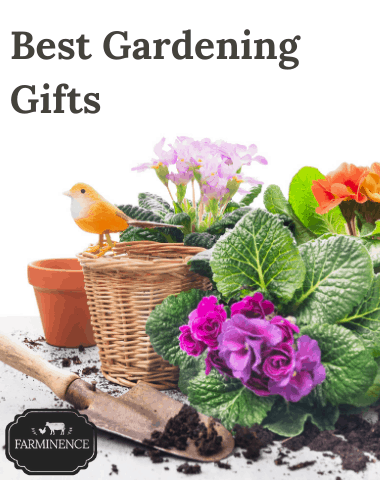 best gardening gifts, gifts for a gardener, gardening gift ideas, best gifts for a gardener
